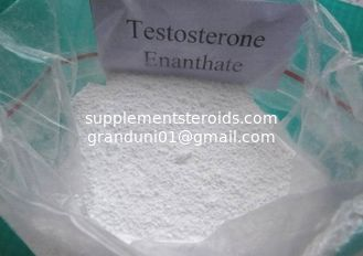 China Effective Testosterone Enanthate powder and Injectable liquid for Muscle Building CAS 315-37-7 supplier