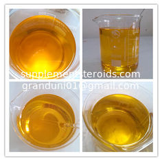 China 315-37-7 Pharmaceutical Steroids Testosterone Enanthate Professional supplier