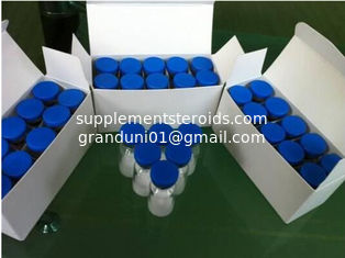 China Gonadorelin Bodybuilding Supplements Gonadotropin-releasing Hormone GnRH 71447-49-9 supplier