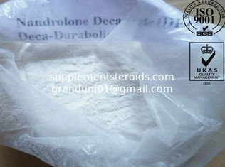China Muscle Building Nandrolone Decanoate DECA Powder Durabolin CAS NO. 360-70-3 supplier