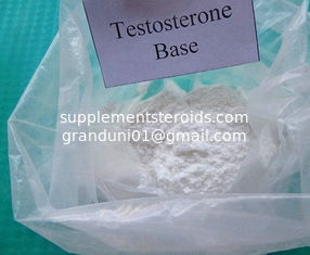 China Potent Raw Testosterone Powder Testosterone Base Male Sex Hormone and Anabolic Steroid 58-22-0 supplier