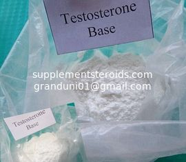 China Muscle Enhancement Hormone Androgens Raw Testosterone Powder Testosterone Base 58-22-0 supplier