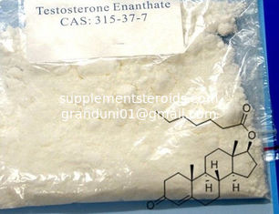 China Muscle Building Raw Testosterone Powder Test E  Primoteston Depot Steroids supplier