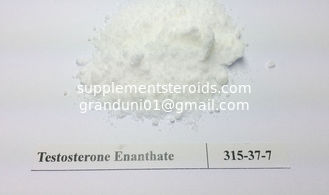 China Injection Raw Testosterone Powder Testosterone Enanthate 315-37-7 supplier