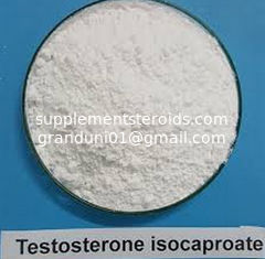 China Testosterone Isocaproate CAS 15262-86-9 Steroid Test Iso supplier