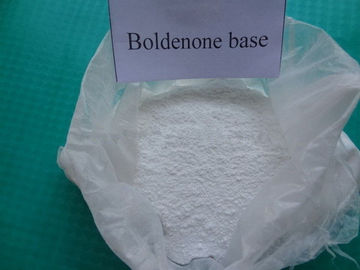 China Raw Anabolic Steroid Powder Source Boldenone Acetate Medical Grade 846-48-0 Cancer Treatment factory