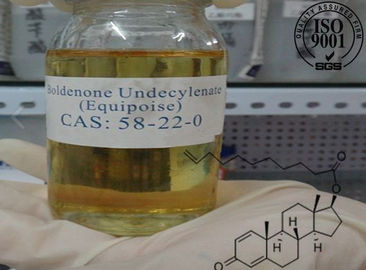 China 13103-34-9 Equipoise Bolde Boldenone Undecylenate Bodybuilding Natural Supplements factory
