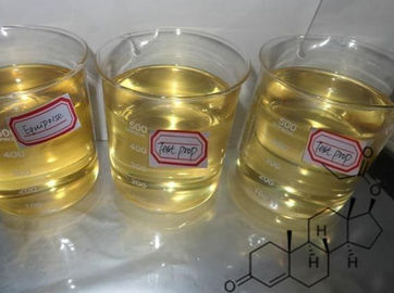 China Raw Steroids Testosterone Propionate 100 / 250 MG/ML Test Prop Injectable Liquld factory