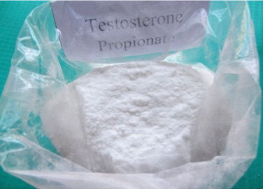 China Muscle Building Testosterone Propionate Test Prop Powder CAS NO 57-85-2 factory