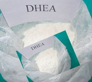 Powerful Sex Hormones DHEA Didehydroepiandrosterone For Male And Female