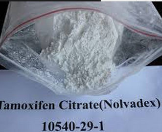 China Oral or Injectable Raw Weight Loss Powder 10540-29-1 Estrogen Nolvadex Tamoxifen Citrate factory