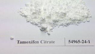China Natural Weight Loss Steroids Powder Nolvadex Tamoxifen Citrate 54965-24-1 Anti-estrogen factory