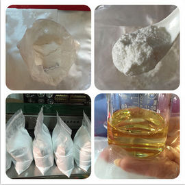 China Injectable Testosterone Enanthate Powder 200mg/ml Recipe Test E CAS 315-37-7 factory