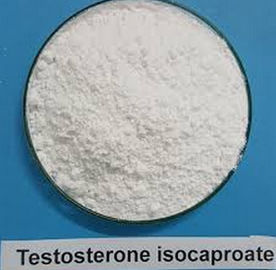 China Testosterone Isocaproate CAS 15262-86-9 Steroid Test Iso factory